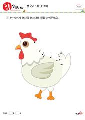 선 긋기 - 닭(1~10)