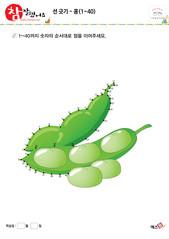 선 긋기 - 콩(1~40)
