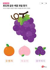 포도와 같은 색깔 과일 찾기
