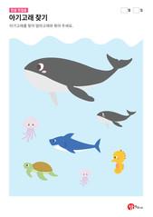 아기고래 찾기