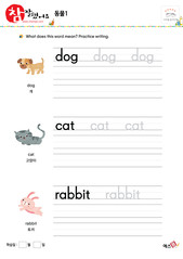 동물 - 개, 고양이, 토끼
