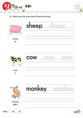 동물 - 양, 소, 원숭이