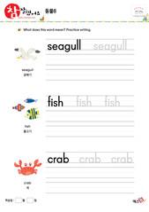 동물 - 갈매기, 물고기, 게