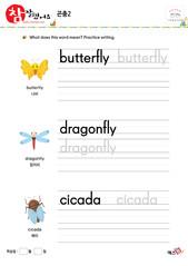 곤충 - 나비, 잠자리, 매미