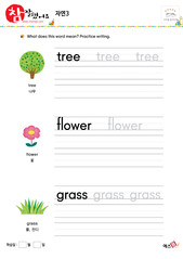 자연- 나무, 꽃, 풀