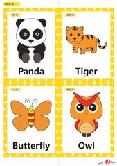 영어 단어 카드 동물 곤충(A형) - 판다, 호랑이, 나비, 부엉이