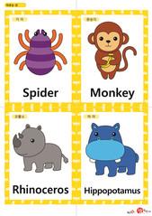 영어 단어 카드 동물 곤충(A형) - 거미, 원숭이, 코뿔소, 하마