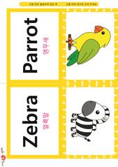 영어 단어 카드 동물 곤충(B형) - 앵무새, 얼룩말