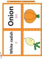 영어 단어 카드 과일 채소(B형) - 양파, 무