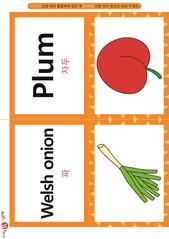 영어 단어 카드 과일 채소(B형) - 자두, 파