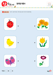 일대일 대응 - 무당벌레, 병아리, 나비, 해바라기, 튤립