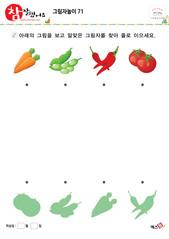그림자놀이(당근, 강낭콩, 고추, 토마토)