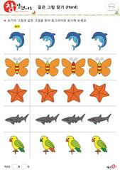 같은 그림 찾기 - 돌고래, 나비,  불가사리, 상어, 앵무새