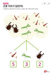 곤충 가르기 (답안지)