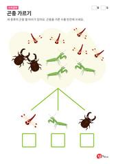 곤충 가르기