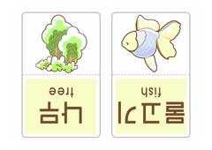 낱말카드나무물고기