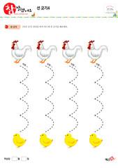 선 긋기 - 닭, 병아리