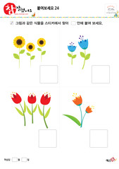 붙여보세요(식물, 해바라기, 꽃, 튤립)