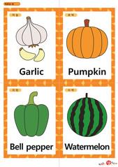 영어 단어 카드 과일 채소(A형) - 마늘, 호박, 피망, 수박