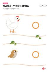 닭과 참새 중 무엇이 더 클까요?