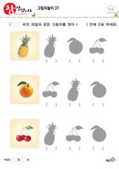 그림자놀이 - 같은 모양의 그림자 찾기(과일)