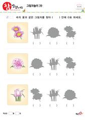 그림자놀이 - 같은 모양의 그림자 찾기(꽃)