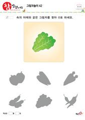 그림자놀이 - 같은 모양의 그림자 찾기(야채, 배추 찾기)