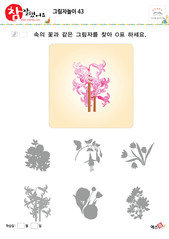 그림자놀이 - 꽃 그림자 찾기