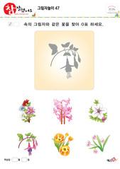 그림자놀이 - 같은 모양의 그림자 찾기(꽃, 나팔꽃, 무궁화)