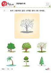 그림자놀이 - 그림자와 같은 나무를 찾아보세요