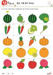 같은 그림 찾기 - 과일, 채소, 수박, 멜론, 키위, 고추, 배추, 파, 호박, 파인애플, 당근, 레몬, 오렌지, 배, 복숭아, 사과, 자두