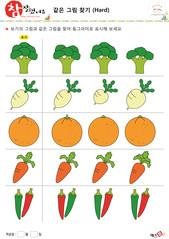 같은 그림 찾기 - 브로콜리, 무, 오렌지, 당근, 고추