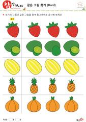 같은 그림 찾기 - 딸기, 키위, 참외, 파인애플, 양파