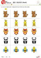 같은 그림 찾기 - 고양이, 토끼, 부엉이, 판다, 꿀벌