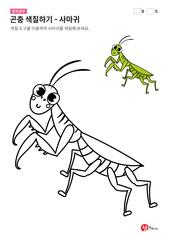 곤충 색칠하기 - 사마귀