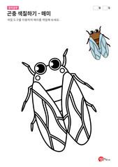 곤충 색칠하기 - 매미