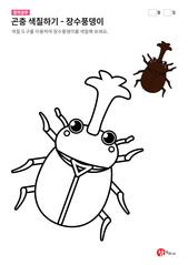 곤충 색칠하기 - 장수풍뎅이