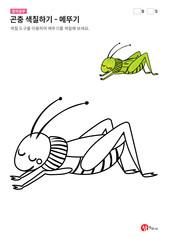 곤충 색칠하기 - 메뚜기