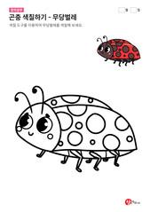곤충 색칠하기 - 무당벌레