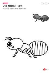 곤충 색칠하기 - 개미