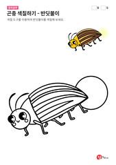 곤충 색칠하기 - 반딧불이
