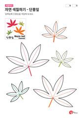 자연 색칠하기 - 단풍잎