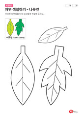 자연 색칠하기 - 나뭇잎