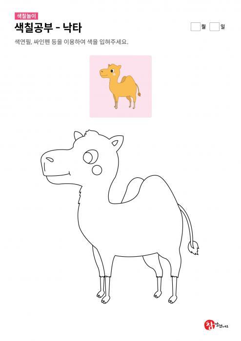 색칠하기 - 웃고 있는 낙타