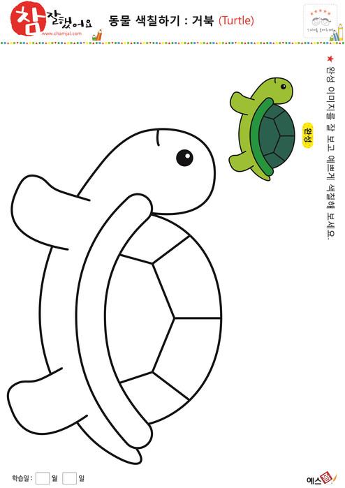 동물 색칠하기 - 거북