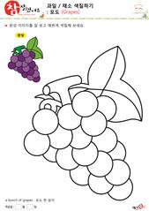 과일 / 채소 색칠하기 - 포도