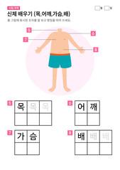 신체 배우기 (목,어깨,가슴,배)