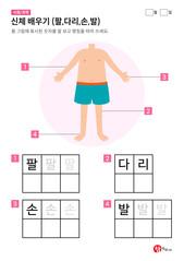 신체 배우기 (팔,다리,손,발)