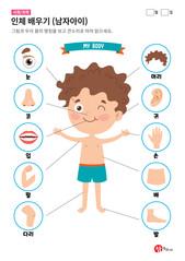 인체 배우기 (남자아이)