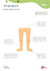 우리 몸 이름쓰기 - 음순, 종아리, 발바닥, 발목, 발등